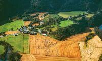 Smartfarm analyserar jordbruket från rymden