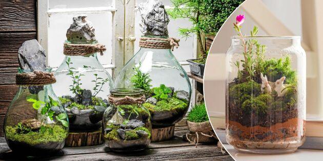 Mossterrarium - 10 vackra burkar att inspireras av