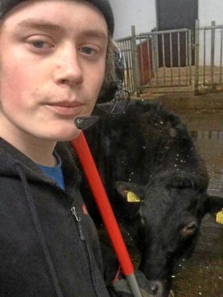 Olle Norman går Vretaskolans naturbruksprogram. Han föredrar att jobba med både djur och maskiner framför att vara djurskötare till hundra procent.