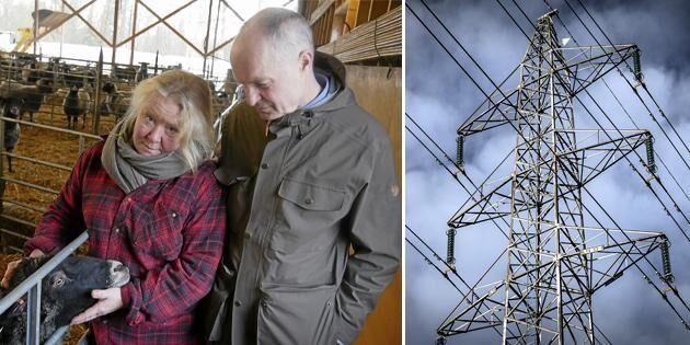 Nya kraftledningen hotar deras företag