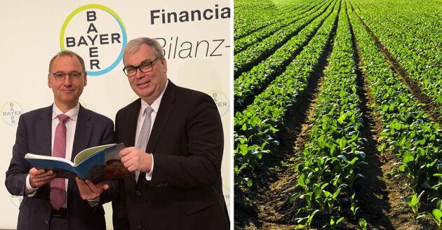 Werner Baumann, Bayer och Hugh Grant, Monsanto.