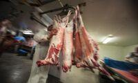 Tvingas dementera rykten om utländskt kött