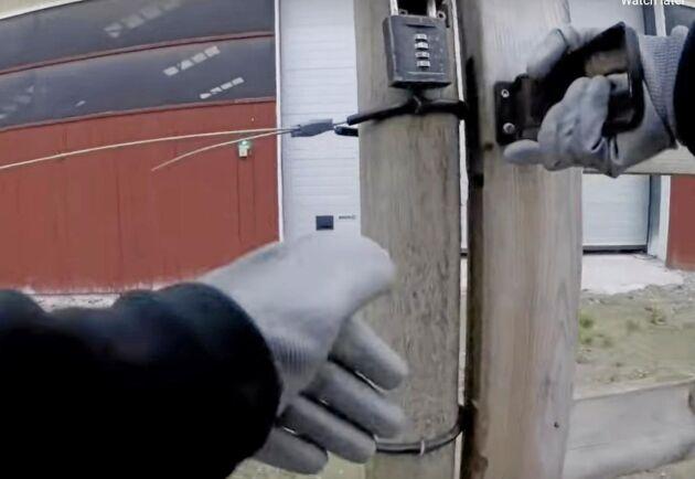 På den video som publicerats av militanta djurrättsaktivister syns hur de bryter sig in i minkstallet på gården.