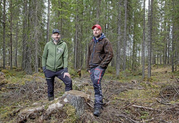 Magnus Olofsson och Sebastian Acker äger och driver Orangutang Skogs- och Naturvård AB.