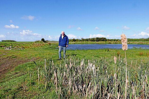 Anlagda dammar och nyplanterade träd ska öka den biologiska mångfalden.