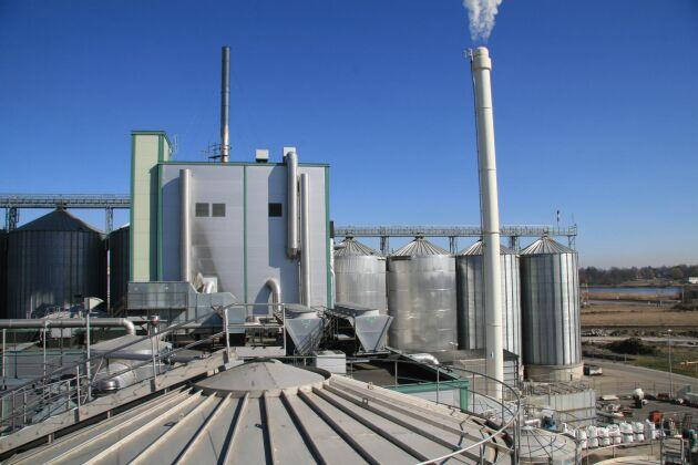 Lantmännens etanolfabrik i Norrköping använder majs för att täcka bristen på svensk spannmål.