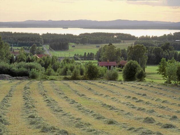 Utsikt från Skattungbyn ned mot sjön Skattungen.