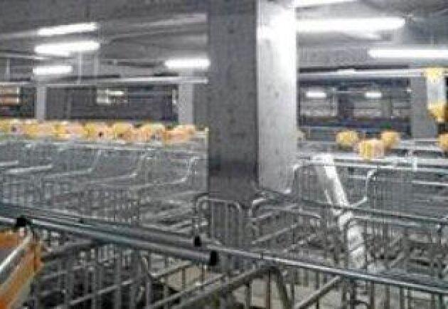 Foto: Skiold A/S Suggstall från fjärde våningen. Ljusinsläppen blir få och de bärande pelarna många.