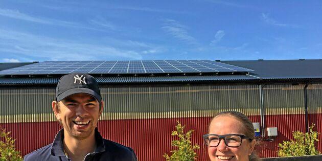 Solceller bra för företag