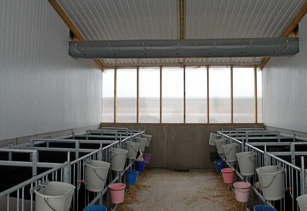 Avdelningen för spädkalvar består av sju fack med tolv enkelboxar i varje. Under tak i stallets bakkant löper tubventilationen som ger övertrycksventilationen. Tanken med övertryckventilationen är att luften inte skall spridas mellan boxar.