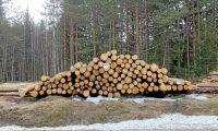 Avgifterna får inte drabba enskilda skogsägare