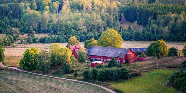 Justitieministerns ursäkter hjälper inte Sveriges lantbrukare