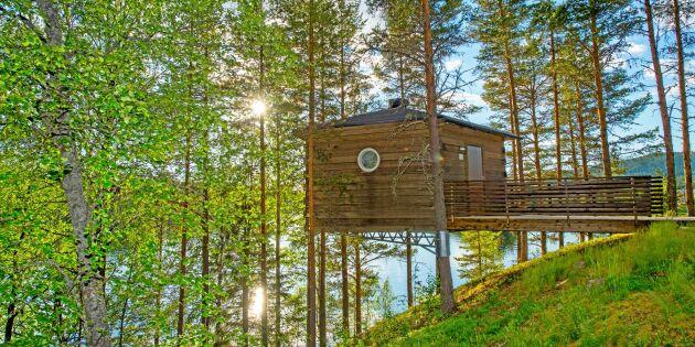Skogshotell gör pengar på tystnaden