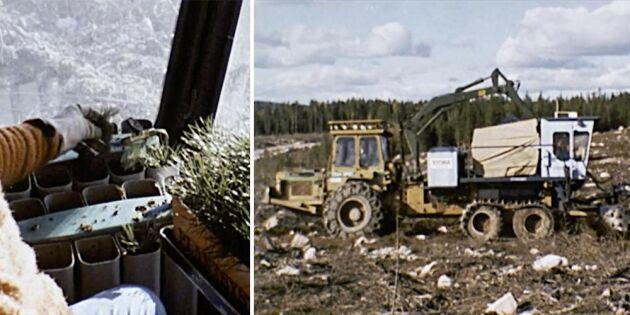 Planteringsmaskinen Silva Nova – så såg den ut då