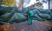930000 värphöns avlivas på polsk besättning
