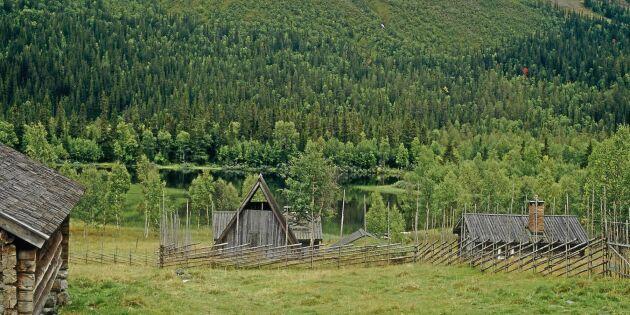"""""""Skogsägarna ha lidit nog – avstå att överklaga"""""""