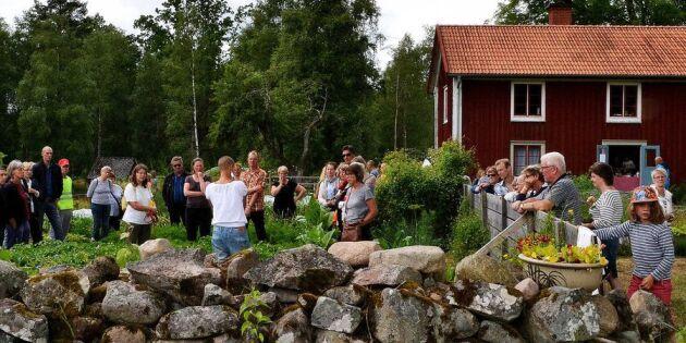Folkfest när Sara Bäckmo visade upp sin trädgård