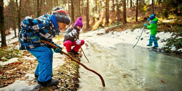 Ny studie: Så viktig är skogen för svenska barn – enligt dem själv
