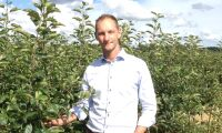"""""""Sönderfrusna äpplen i alla odlingar i hela Sverige"""""""