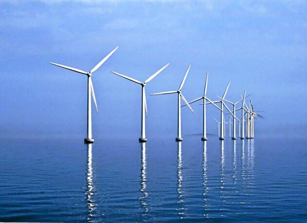 Middelgrunden vindkraftspark i Öresund utanför Köpenhamn i betydligt lugnare väder än i tisdags.