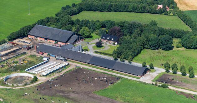 Danska jättegården Burgaard Vestergaard, som består av flera olika egendomar, är till salu för drygt 116 miljoner svenska kronor.