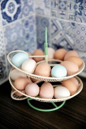 Från hönsgården kan familjen plocka upp mot 10 ägg per dag sommartid.
