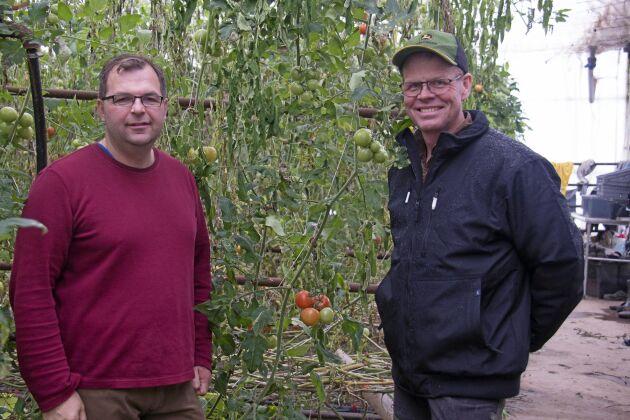 Dan Waldemarssons och Marcus Söderlinds gårdar ligger intill varandra.