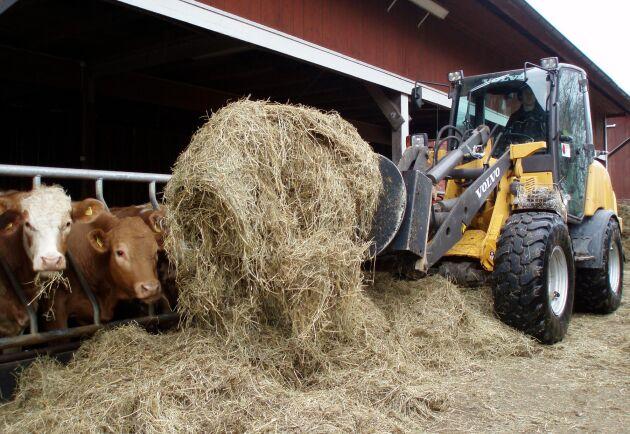 Med planerad körning sparar Håkan Carlborg som bedriver ekologisk nötköttsproduktion både bränsle och personalkostnader.