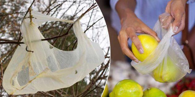 5 fula plastvanor du enkelt kan rensa bort