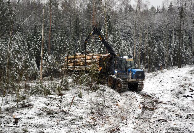 Skotare kör timmer från en avverkningsplats.