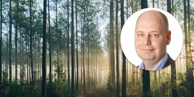 Forskning utvecklar skogsnäringen