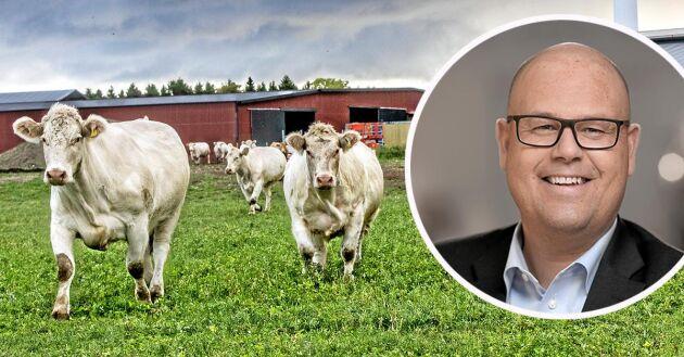 – Det är en stor ökning av svenskt kött och vi hoppas att den ska fortsätta, säger Håkan Åkerström, koncernchef på Martin & Servera.