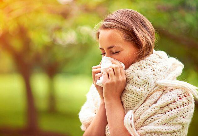 Symtomen på allergi och förkylning kan likna varandra, men det finns skillnader som är bra att ha koll på.