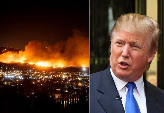 USA:s president Donald Trump anklagar Kaliforniens guvernör Gavin Newsom för usel skogsskötsel.