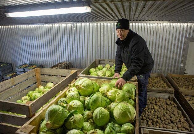 Fredrik Andersson i grönsakskylen. 4000 plantor vitkål sattes denna säsong och fortfarande finns det gott om vitkål att leverera. Potatisskörden blev knappt 20 ton, precis vad kommunen räknar med att köpa av Dingle Lantbruk.