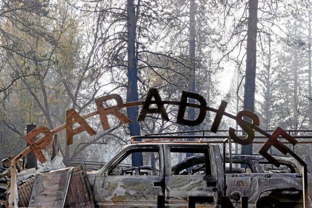 Bilar och hus blev utbrända i Paradise.