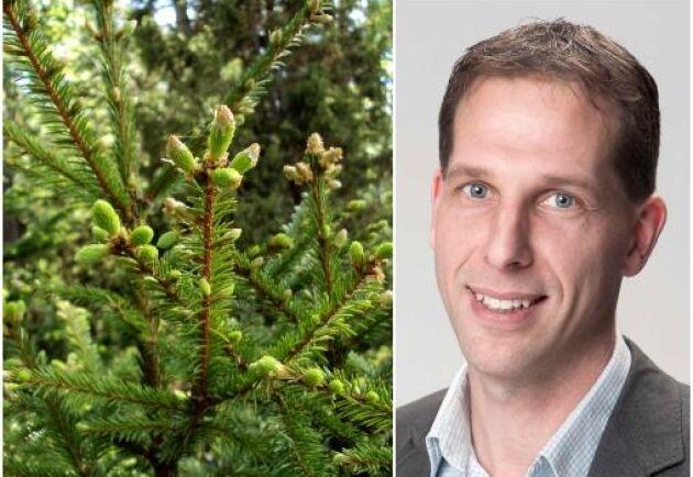 """""""Vi såg en positiv prisutveckling i hela landet, främst beroende på att virkesmarknaden varit väldigt god med prisuppgångar"""", säger Paul Nord, Affärsområdeschef för Skog och Lantbruk på Svefa."""