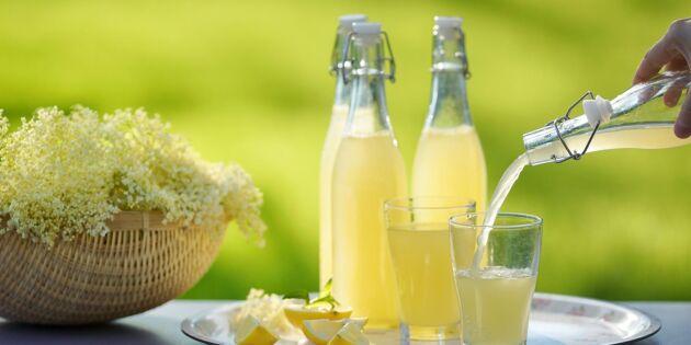 Lands receptskatt: Ljuvliga saftrecept med smak av sommar