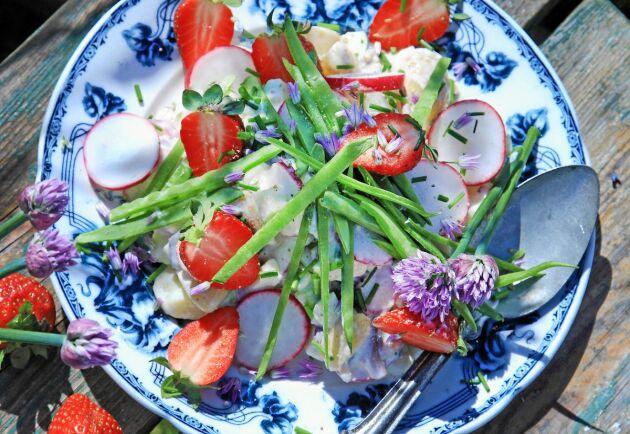 Färgglad och god sommarsallad på matjessill.