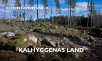"""SVT svarar om """"Slaget om skogen"""""""