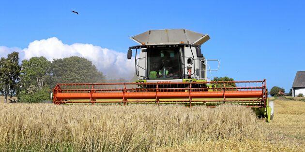 Så tror lantbrukare om framtiden