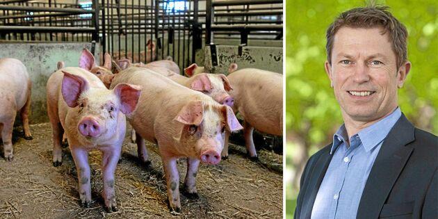 Köttföretagen: Den svenska konkurrenskraften stärks