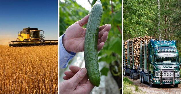 Flera frågor som berör de gröna näringarna kan komma att förändras vid ett regeringsskifte.