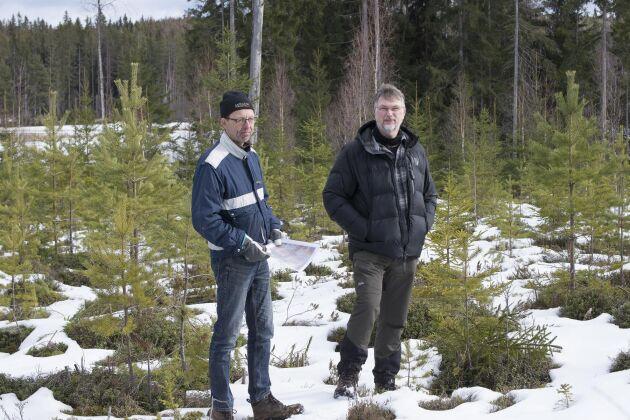 Staffan Larsson, Skogsstyrelsen och Marcus Larsson som delar sin tid som projektledare för Orsa Besparingsskog och Skogsstyrelsen.