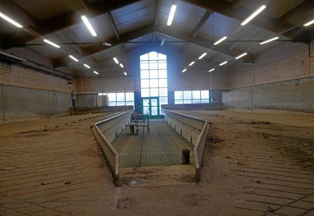 Här, där resterna av det gamla mjölkningsstallet finns, planeras för det kommande robotstallet. Det ska användas för kor som kräver mer tid i robotarna, som nykalvade kor.