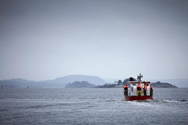 Gästerna får följa med på en tretimmars tur ut till musselodlingen i fjorden.