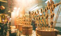 Insektsföretagen redo för startskott om lagligt livsmedel
