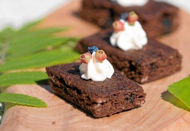 Chokladkaka med odon dekorerade med grädde och små blåbärsblommor – kan vara sommarens godaste kaka i långpanna.