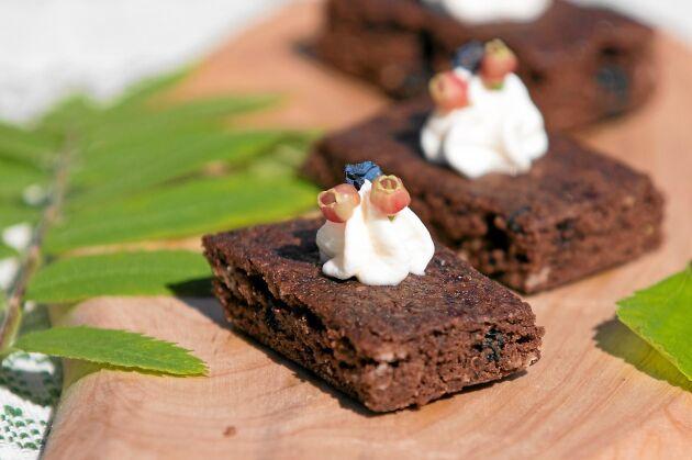 Eva bakar jättegoda chokladrutor med torkade odon.