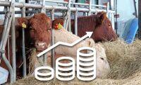Bättre betalt till köttproducenterna